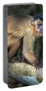 Brown Capuchin Monkey Cebus Apella Portable Battery Charger
