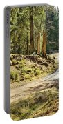 Brown Dirty Road Under Spring Sun Rays Portable Battery Charger