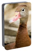 Brown Duck Portrait Portable Battery Charger