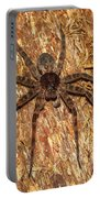 Brown Fishing Spider Portable Battery Charger