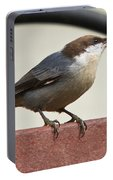 Brown-headed Nuthatch Portable Battery Charger
