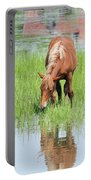Brown Horse And Foal Nature Spring Scene Portable Battery Charger