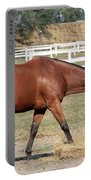 Brown Horse Eating Hay Ranch Scene Portable Battery Charger