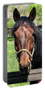 Brown Horse In A Corral Portable Battery Charger