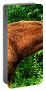 Brown Horse In High Definition Portable Battery Charger