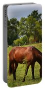 Brown Horse In Holland Portable Battery Charger