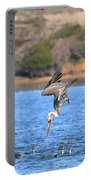 Brown Pelican Diving Portable Battery Charger