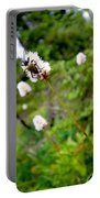 Brown Spruce Longhorn Beetle Two Portable Battery Charger