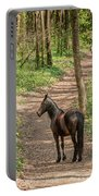 Brown Wild Horse Portable Battery Charger