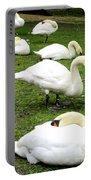 Bruges Swans 2 Portable Battery Charger