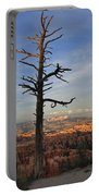 Bryce Canyon Dead Tree Sunset 3 Portable Battery Charger