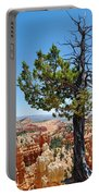 Bryce Canyon Fairyland Point Portrait Portable Battery Charger