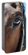 Bryce Canyon Horse Eye Portable Battery Charger