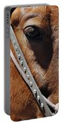 Bryce Canyon Horse Portrait Portable Battery Charger