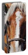 Bryce Canyon Horseback Ride Portable Battery Charger
