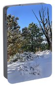 Bryce Canyon Snowfall Portable Battery Charger