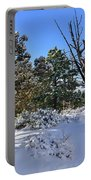 Bryce Canyon Snowfall Portable Battery Charger
