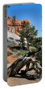 Spires On Navajo Trail Portable Battery Charger
