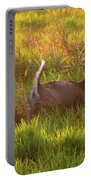 Buck On The Run  Portable Battery Charger