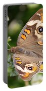 Buckeye Butterfly Square Portable Battery Charger