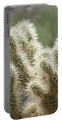 Buckhorn Cholla Portable Battery Charger