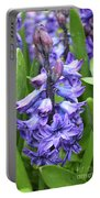 Budding And Flowering Purple Hyacinth Flower Portable Battery Charger