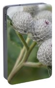 Budding Thistle Portable Battery Charger