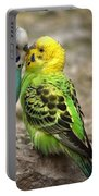 Budgerigar Portable Battery Charger