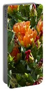 Buds N Blossoms Portable Battery Charger