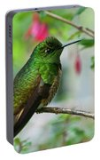 Buff-tailed Coronet Portable Battery Charger