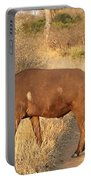 Buffalo Crossing Portable Battery Charger