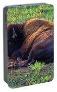 Buffalo In The Badlands Portable Battery Charger