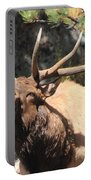 Bugling Bull Portable Battery Charger by Shane Bechler
