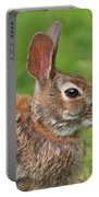 Bugs Bunny.. Portable Battery Charger