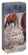 Bull And Horses, Mt. Vernon Portable Battery Charger