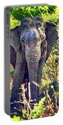 Bull Elephant Threat Portable Battery Charger