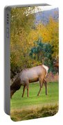 Bull Elk  Bugling With Cow Elks - Rutting Season Portable Battery Charger