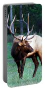 Bull Elk II Portable Battery Charger