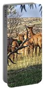 Bull Elk In Point Portable Battery Charger