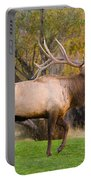 Bull Elk In Rutting Season Portable Battery Charger