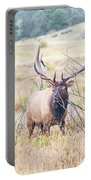 Bull Elk In The Rain Portable Battery Charger