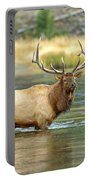 Bull Elk Wading The Madison River Portable Battery Charger