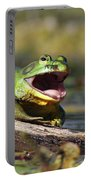 Bull Frog Portable Battery Charger