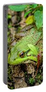 Bull Frog On A Log Portable Battery Charger