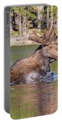Bull Moose Goes For A Swim Portable Battery Charger