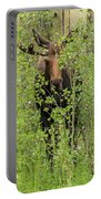 Bull Moose Guards The Aspen Portable Battery Charger