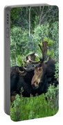 Bull Moose In The Bushes Portable Battery Charger