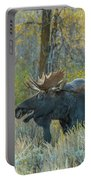 Bull Moose In The Evening Portable Battery Charger
