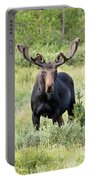 Bull Moose Stands Guard Portable Battery Charger
