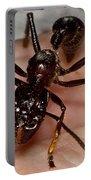 Bullet Ant On Hand Portable Battery Charger